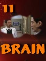 Brain.E11