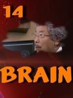 Brain.E14