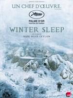 Winter Sleep poster