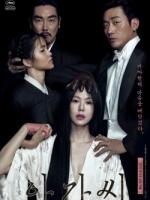 Th Handmaiden poster