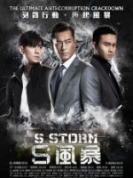 S Storm poster